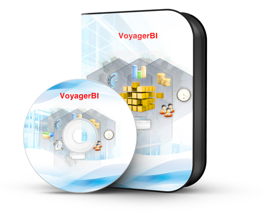 Features of Voyager Business Intelligence Software