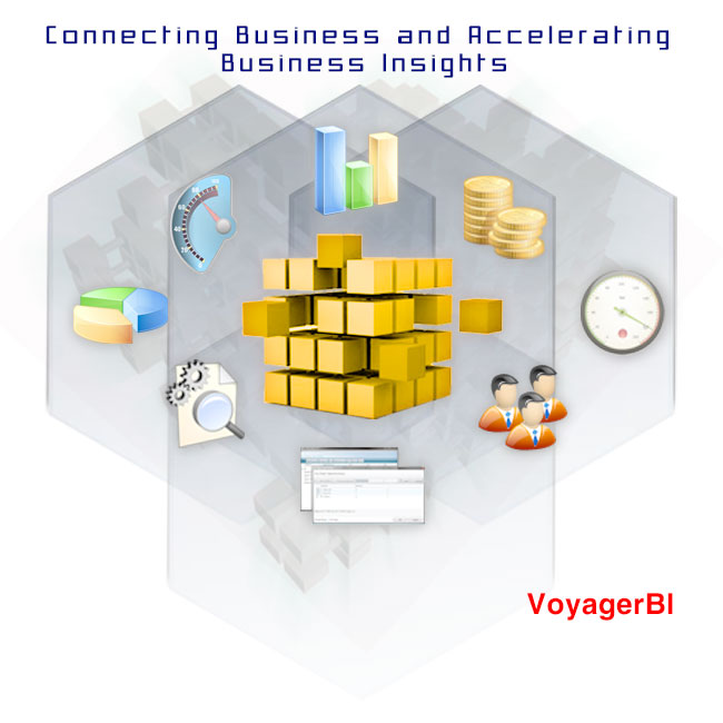 Voyager Business Intelligence
